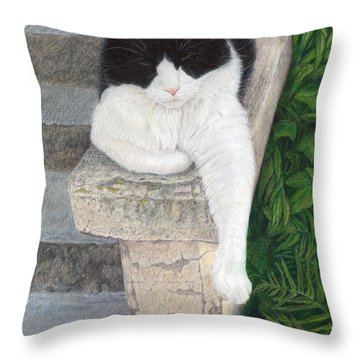 Dreaming Of Stone Lions Throw Pillow by Pat Erickson