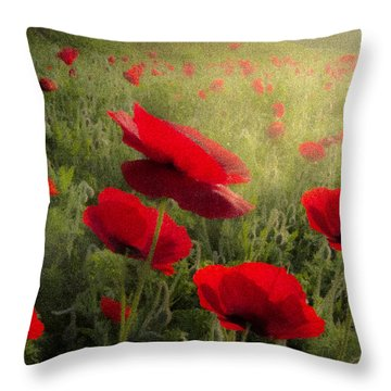 Dreaming Of The Morning Throw Pillow by Debra and Dave Vanderlaan