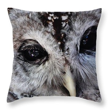 Dreaming Owl Throw Pillow
