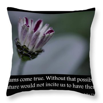 Dreams Throw Pillow by Don Schwartz