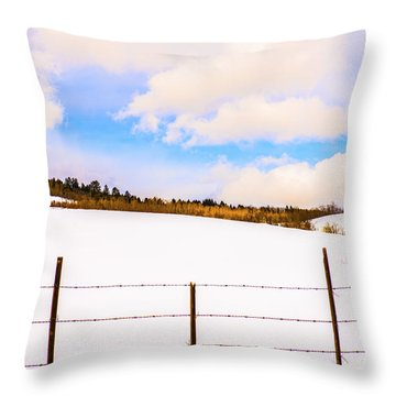 Dreamtime Throw Pillow