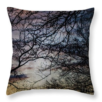 Dreamy 2 Throw Pillow by Judy Wolinsky