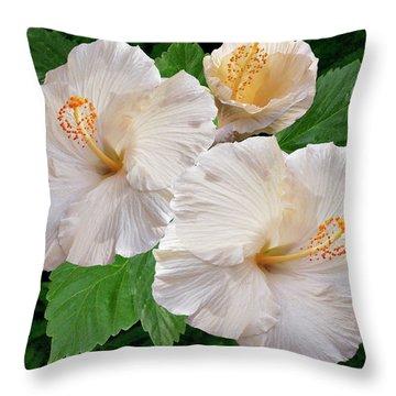Dreamy Blooms - White Hibiscus Throw Pillow