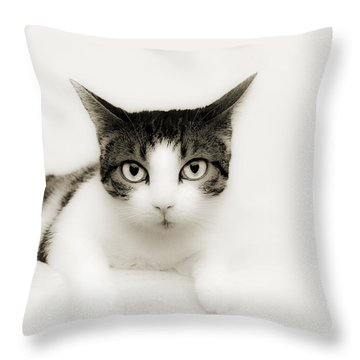 Dreamy Cat Throw Pillow by Andee Design
