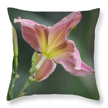 Dreamy Daylily Throw Pillow by Patti Deters