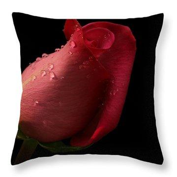 Dreamy Throw Pillow by Doug Norkum