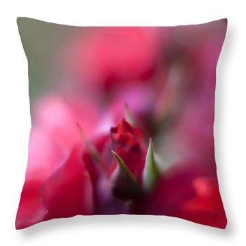 Dreamy Nest Throw Pillow by Mike Reid