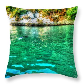 Throw Pillow featuring the photograph Dreamy River by Hanza Turgul