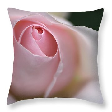 Dreamy Rose Throw Pillow