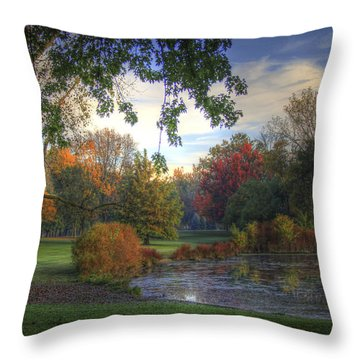 Dreamy View Throw Pillow