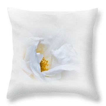 Dreamy White Rose Throw Pillow by Jane McIlroy