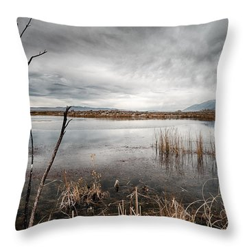 Dreary Throw Pillow by Cat Connor