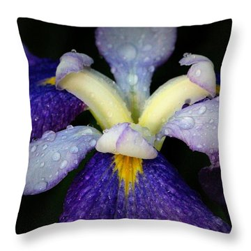 Drenched Throw Pillow by Deborah  Crew-Johnson