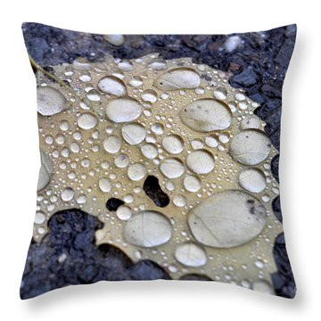 Drenched Leaf Throw Pillow
