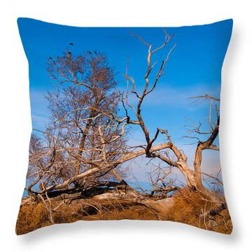 Dressed Down For Winter Throw Pillow