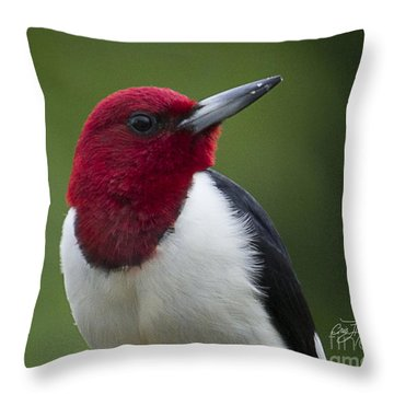 Dressed For Success Throw Pillow by Cris Hayes