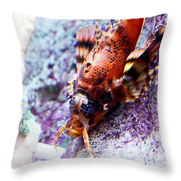 Dressed Up... Throw Pillow