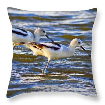 Throw Pillow featuring the photograph Dribbling Contest by Gary Holmes