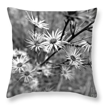 Dried Out Perfection Throw Pillow