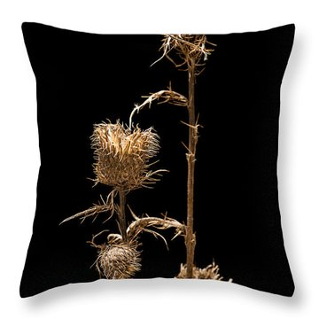 Dried Prairie Blazing Star Throw Pillow