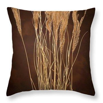 Dried Winter Grasses Throw Pillow by Steve Gadomski