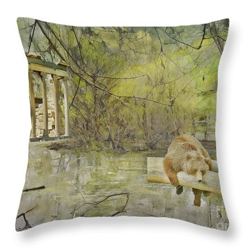 Throw Pillow featuring the photograph Drifter by Liane Wright