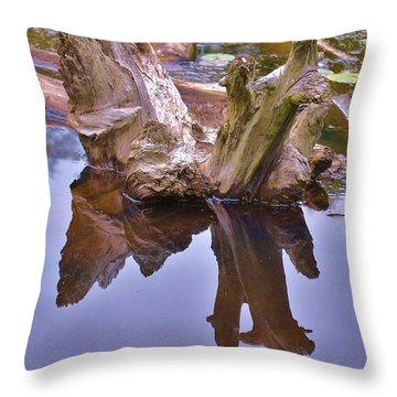 Drifting Reflections Throw Pillow by Mary Zeman