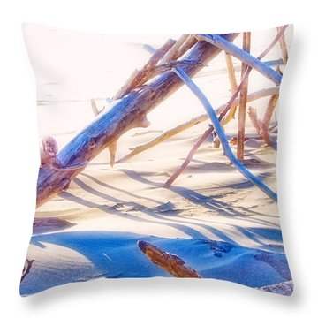 Driftwood 1 Throw Pillow by Adria Trail