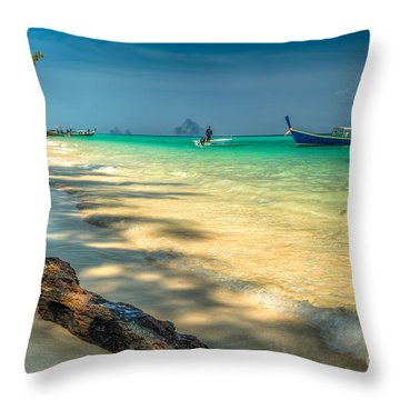 Driftwood Throw Pillow by Adrian Evans