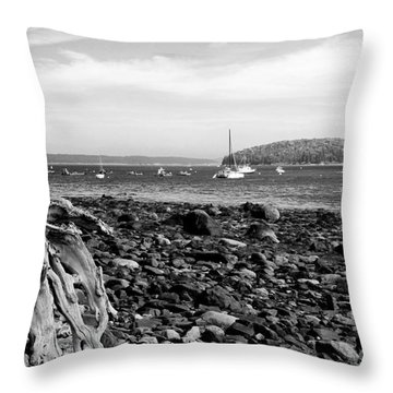 Driftwood And Harbor Throw Pillow