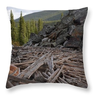 Driftwood And Rock Throw Pillow by Cheryl Miller