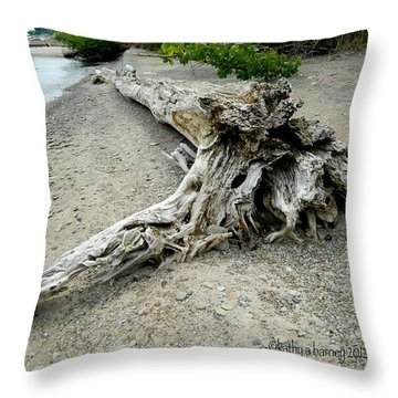 Driftwood At Lake Erie Throw Pillow by Kathy Barney