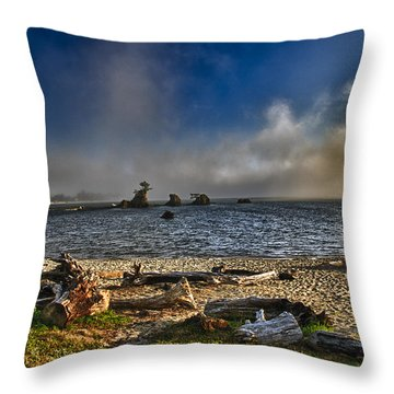 Driftwood Beach Throw Pillow