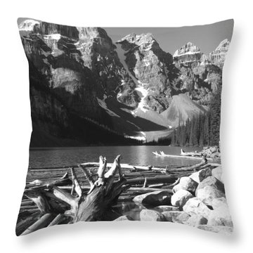 Driftwood - Black And White Throw Pillow by Marcia Socolik
