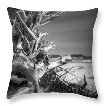 Driftwood At Race Point Throw Pillow by Brian Caldwell
