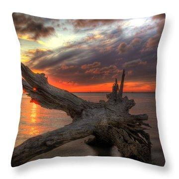 Driftwood Eye Of Fire Throw Pillow