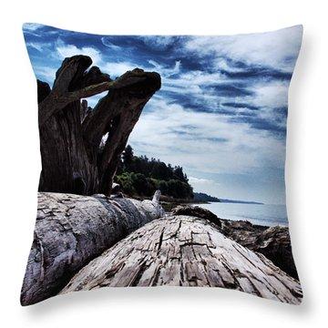 Driftwood In Teddy Bear Cover Throw Pillow