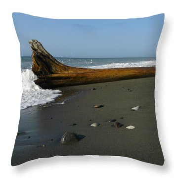 Throw Pillow featuring the photograph Driftwood by Jane Ford