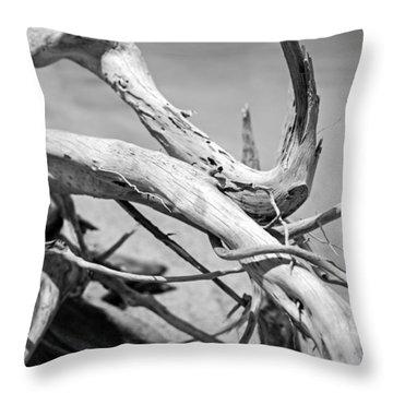 Driftwood Throw Pillow by Jonathan Gewirtz