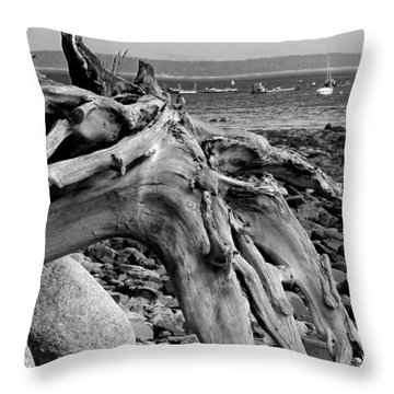 Driftwood On Rocky Beach Throw Pillow