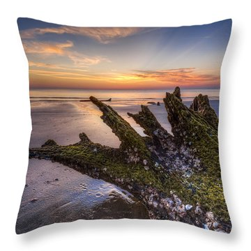 Driftwood On The Beach Throw Pillow by Debra and Dave Vanderlaan