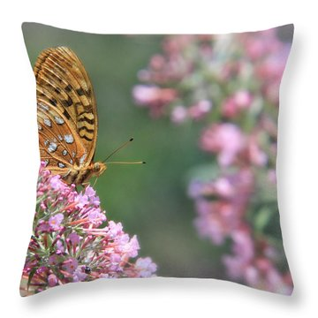 Drink Pink Throw Pillow by Lori Deiter