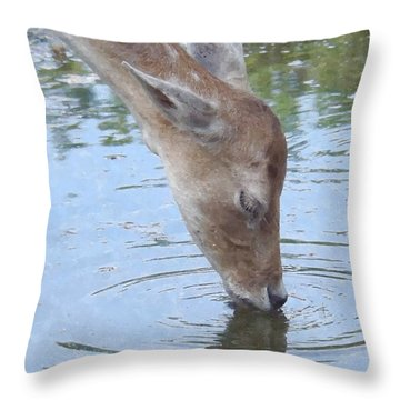 Drinking Doe Throw Pillow
