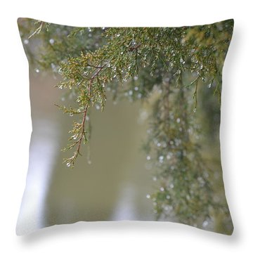 Throw Pillow featuring the photograph Dripping Jewels by Mary Zeman