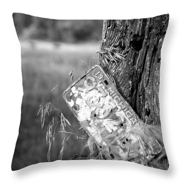 Throw Pillow featuring the photograph Drive Me Home by John Crothers