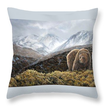 Driven To Rest Throw Pillow