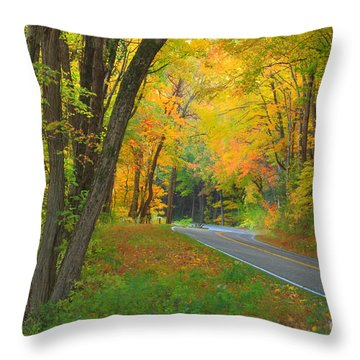 Driving Into Fall Throw Pillow by Geraldine DeBoer
