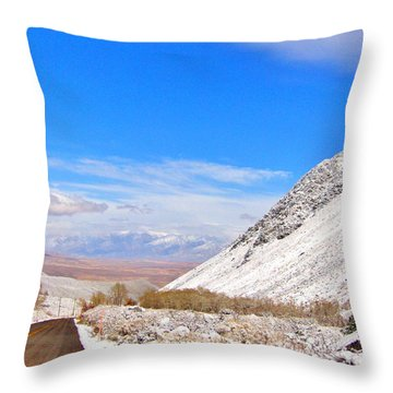 Driving Pine Creek Canyon Throw Pillow