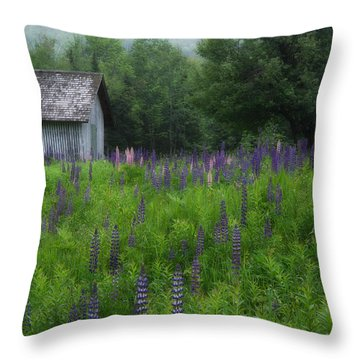 Drizzly Afternoon Throw Pillow