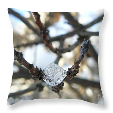Throw Pillow featuring the photograph Drop Of Ice by Jane Ford